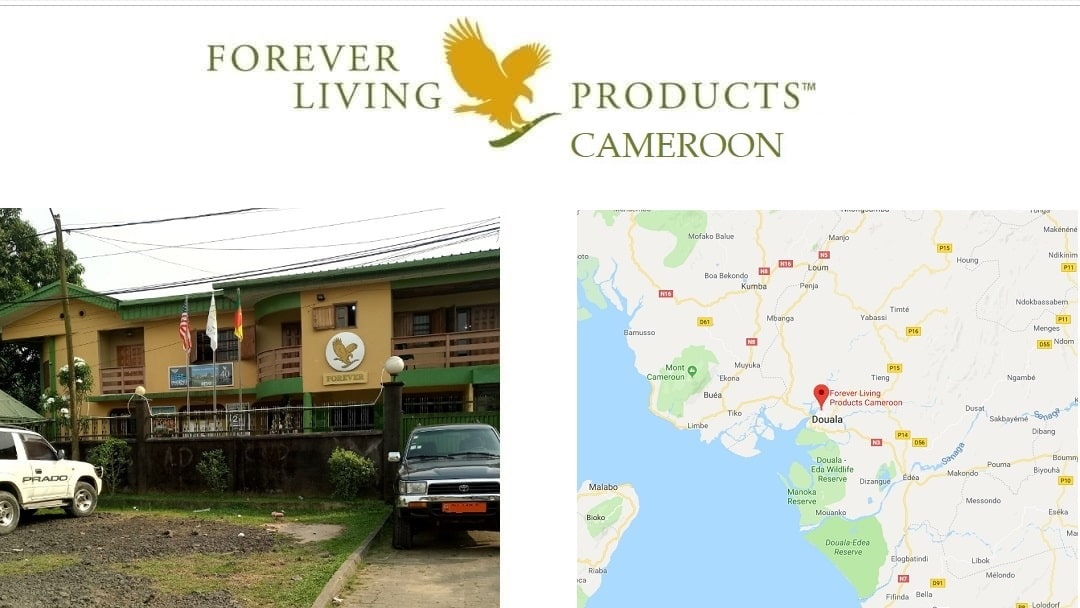Forever Living Products Cameroon