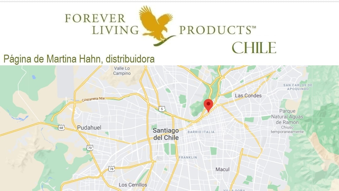 Registro come distribuidor Forever Living Products Chile
